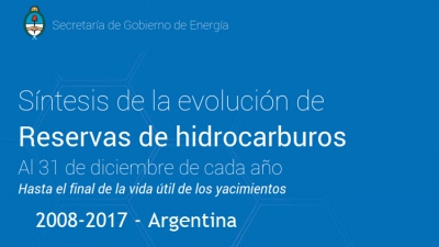 Estado de Reservas Oil & Gas Argentina - 2008-2017